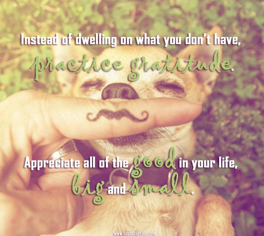 AFFIRMATION: Practice Gratitude